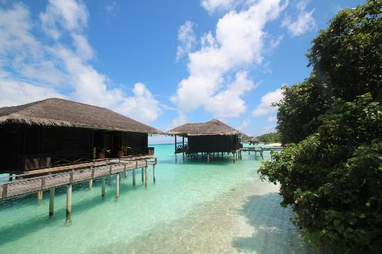 Kuramathi Island Resort: Water villa