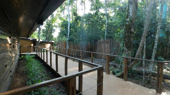 abords de la piscine picture of la cantera lodge de selva by don puerto iguazu tripadvisor. Black Bedroom Furniture Sets. Home Design Ideas