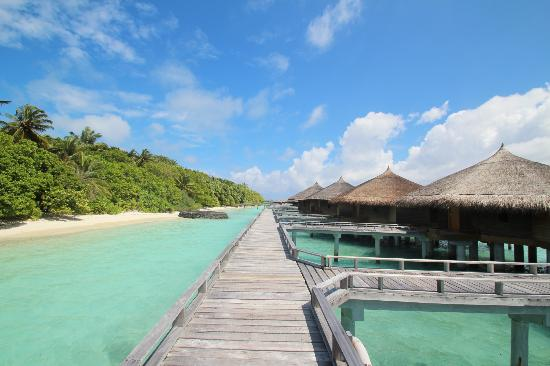 Kuramathi Island Resort: Water villa with jacuzzi