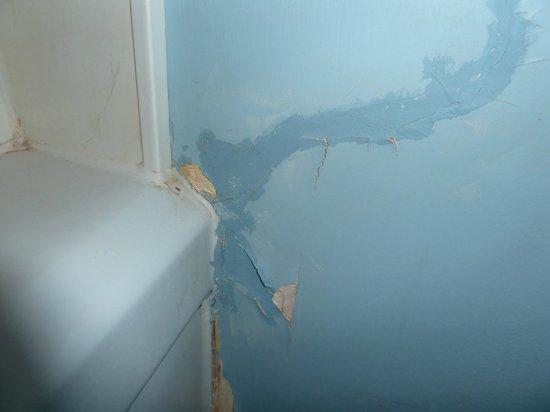 Wells Gray Inn: Wall in bathroom
