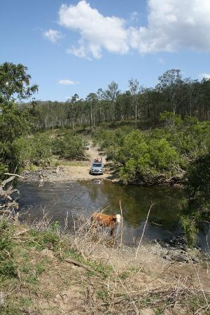 Clarence River Wilderness Lodge: River crossing near campsite