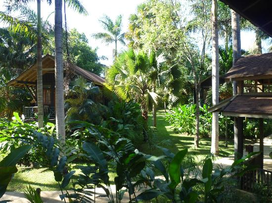 Sunset at the Palms: Tree cabins in a hotel garden