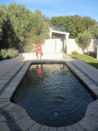 Hermanus Backpackers: the pool and BBQ area outside the cottage