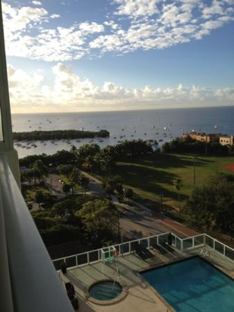 Sonesta Coconut Grove Miami: the amazing view