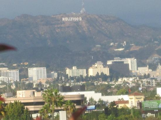 Kimpton Hotel Wilshire: zoomed view from rooftop