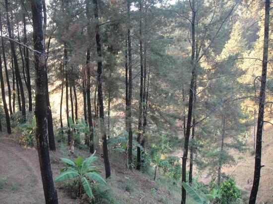 Pasuruan, Indonesia: the view