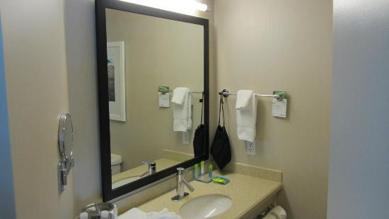 Radisson Hotel & Suites Fallsview: Bathroom