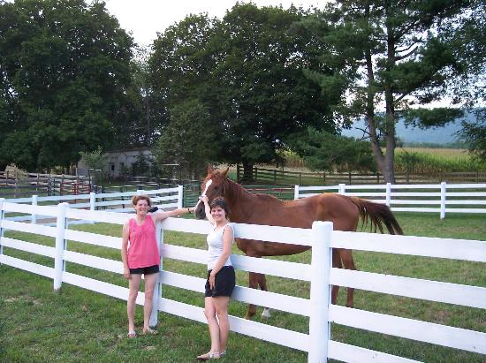Rosendale Inn Bed and Breakfast: Traveling with horses