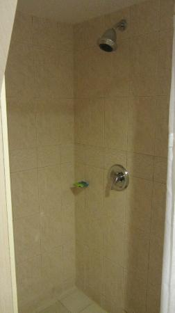 Radisson Hotel & Suites Fallsview: Shower