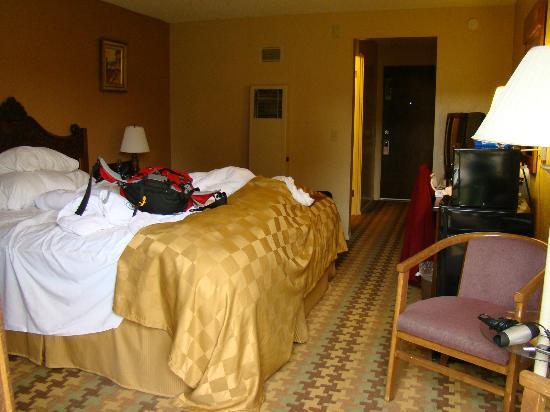 Silver Surf Motel: Zimmeransicht