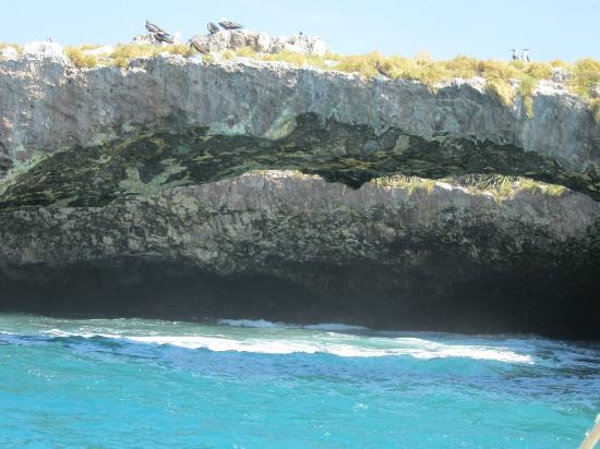 Nayarit, Mexico: Sea cave - birds above, turquoise waters below