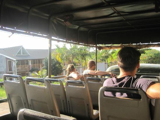 Iguazu Forest: Bus Turistico