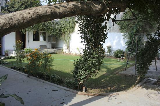 Prem Abhilasha: Backyard