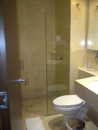 Blue Suites Hotel: baño