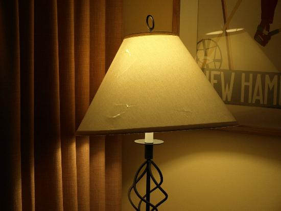 Steele Hill Resorts: Lamp shade with holes