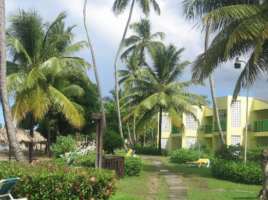 Turtle Beach by Rex Resorts: Rechts ist ein Teil des kleinen überschaulichen Zimmertrakts zu sehen, links ist gleich der Stra