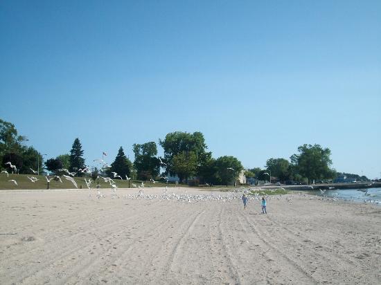 Hotel Stebbins: Beach