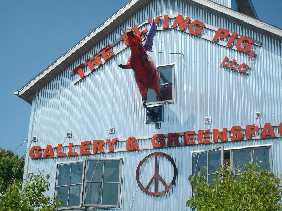 Hotel Stebbins: Flying Pig!!