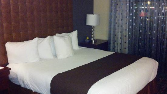 Embassy Suites by Hilton Hotel Los Angeles International Airport South: Nice comfy bed