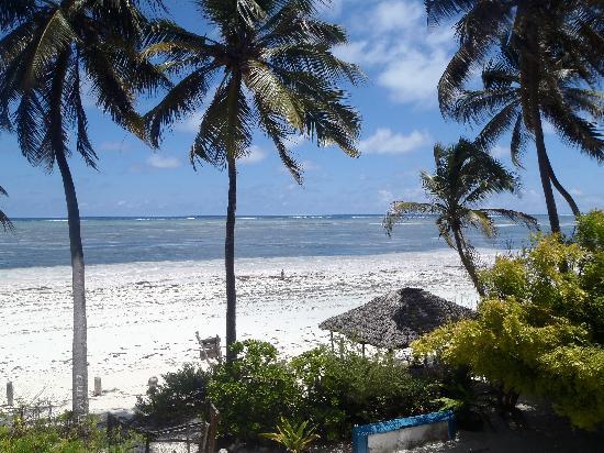Palm Beach Inn : blissful
