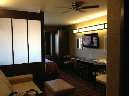 Microtel Inn & Suites by Wyndham Round Rock : Room