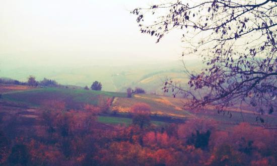 Locanda della Fortuna: Lo splendido paesaggio autunnale dalla finestra