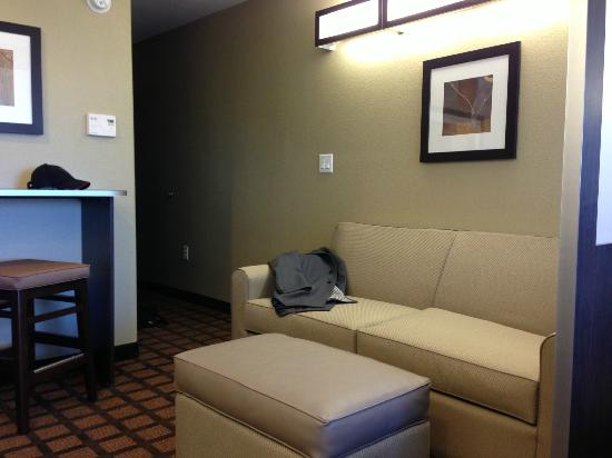Microtel Inn & Suites by Wyndham Round Rock: Living area in room