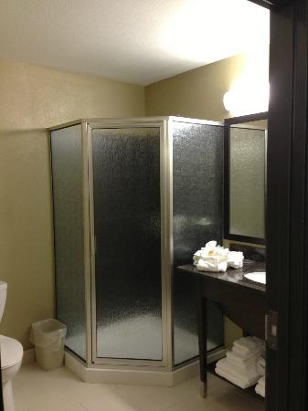 Microtel Inn & Suites by Wyndham Round Rock: Bathroom