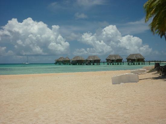Tikehau Pearl Beach Resort: Foto della spiaggia del resort, nonchè vista dei beach bungalow.