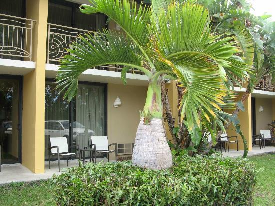 Hampton Inn Key Largo: Our room