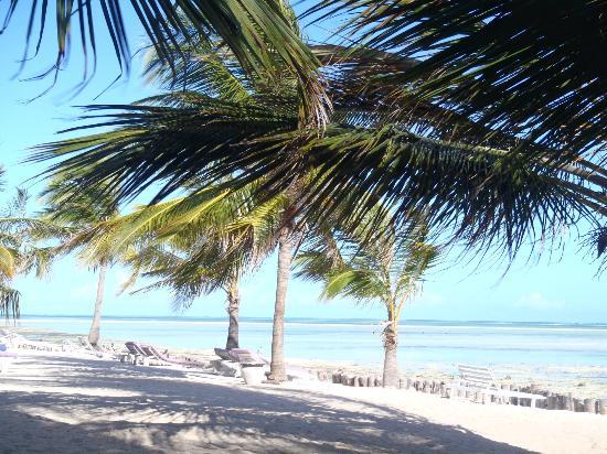 Jacaranda Beach Resort: La spiaggia