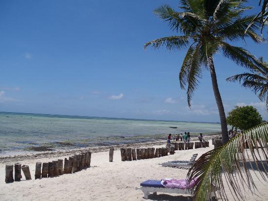Jacaranda Beach Resort: Spiaggia.