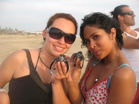 Pie de la Cuesta, Mexico: Liberación de tortugas en La Barra de Coyuca