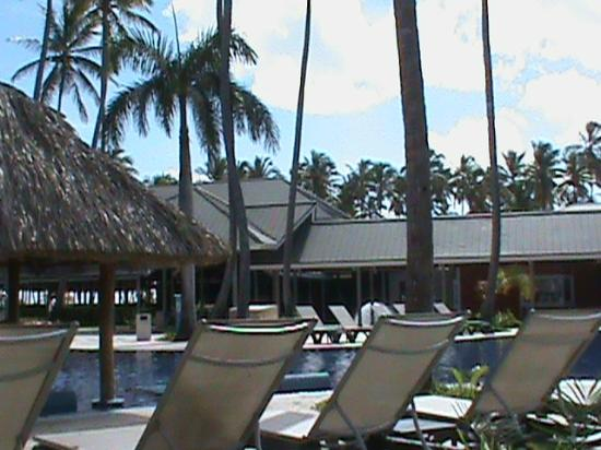 Barcelo Bavaro Beach - Adults Only: pool area