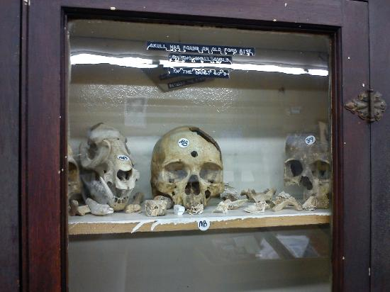 Old Fort Sumner Museum Skulls Found At Site Note Bullet Hole Between