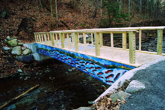 The new Grimes Glen fish bridge painted by beloved local artist Darryl Abraham.