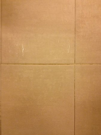 Omni Providence Hotel: Dirty shower