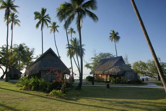Sofitel Moorea Ia Ora Beach Resort: Les bungalows plage