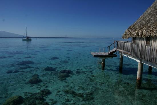Sofitel Moorea Ia Ora Beach Resort: Les pilotis sur le jardin de corail