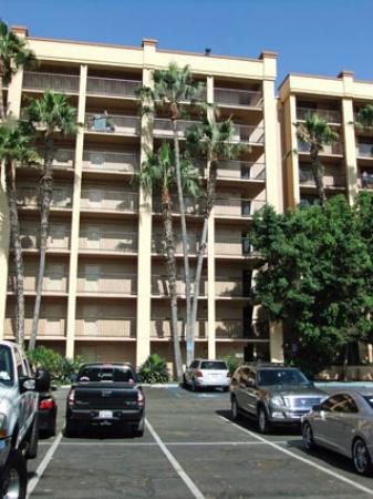 Crowne Plaza Hotel San Diego - Mission Valley: Vue depuis l'arrière de l'hôtel