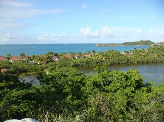 Galley Bay Resort: View of Galley Bay from hill