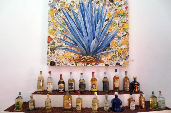 La Rojeña: Agave collage with bottles - beautiful