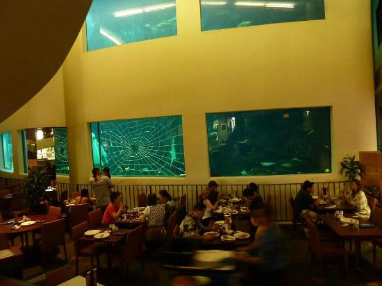 ‪‪Pacific Beach Hotel‬: Oceanarium Restaurant in Pacific Beach Hotel.