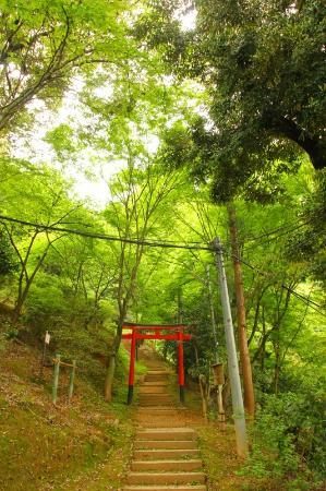 The Westin Miyako Kyoto: 敷地内を散策