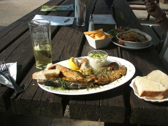 Mersea Island, UK: Sardines