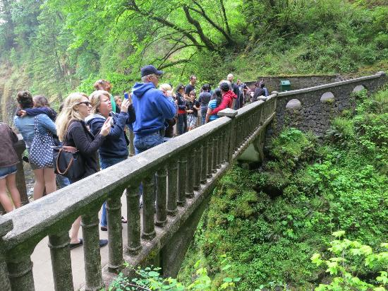 Multnomah Falls: bridge packed with people
