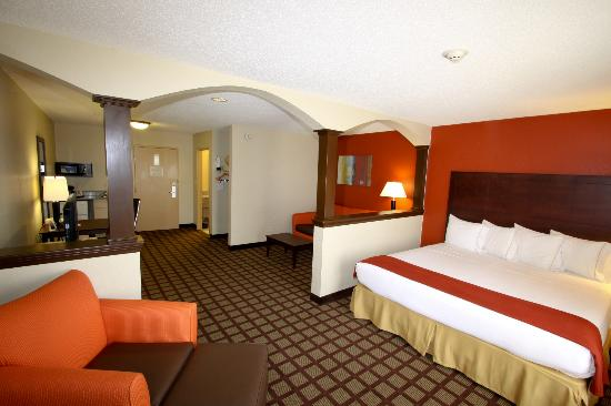 Holiday Inn Express Hotel & Suites Chicago-Algonquin: Executive King Suite