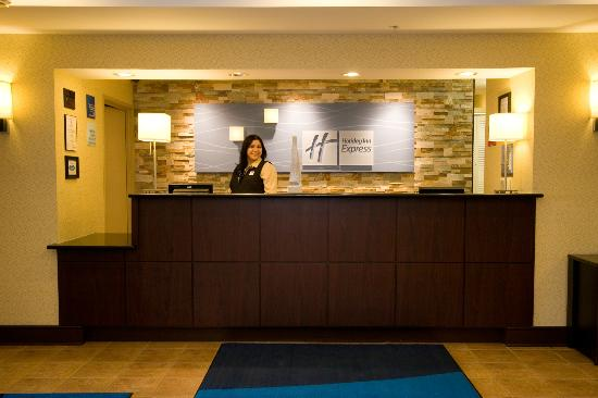 Holiday Inn Express Hotel & Suites Chicago-Algonquin: Reception Area
