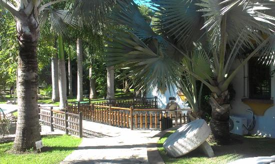 A quiet corner picture of jardin botanico molino de inca for Jardin botanico torremolinos