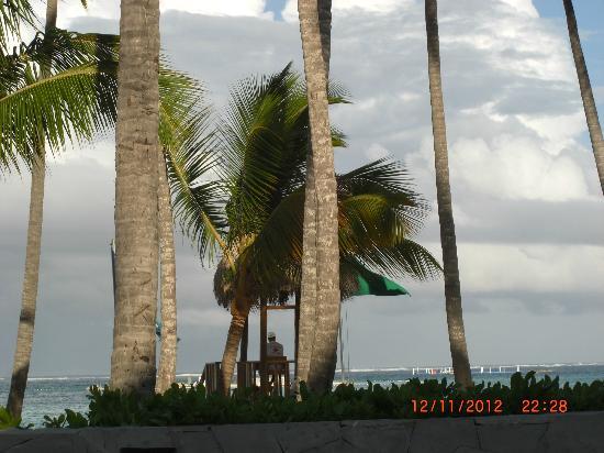 Barcelo Bavaro Beach - Adults Only: Pool und Strand Bavaro Beach